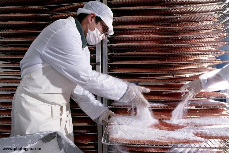 reportage_usine_salaison_saumon