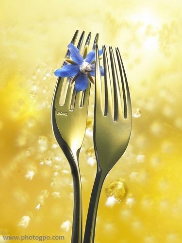 culinaire_fourchette